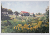 Looking Across the Field Collectable Print by Neville Clarke