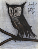 Owl Collectable Print by Bernard Buffet