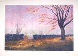 Autumn Collectable Print by David Cain