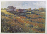 House in a Field Collectable Print by David Cain