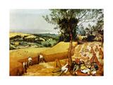 La Moisson Konst på metall av Pierre Bruegel