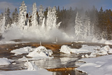 Hotspring and snow covered trees, Silex Spring, Fountain Paint Pots Basin, Lower Geyser Basin Photographic Print by Allen Lloyd