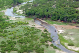 Aerial view of river, African Elephants (Loxodonta africana) and tourist lodge, Botswana Photographic Print by Jean Hosking