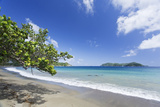 View of sandy beach, looking towards Little Tobago, Speyside, Tobago Photographic Print by Kevin Elsby