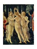 Sandro Botticelli - Les Trois Graces - Reprodüksiyon
