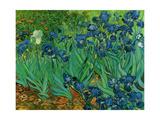 Vincent van Gogh - Les Iris, 1889 - Sanat