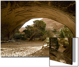 Trees and natural sandstone arch in desert, Navajo Arch, Arches , Utah Poster by Bob Gibbons
