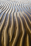Patterns on wet sandy beach at low tide, Northumberland, England, july Photographic Print by David Tipling