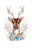 Deer - Front View Prints by  tanycya