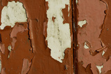Old wooden door with red paint flaking, Cumbria, England Fotografisk tryk af Wayne Hutchinson
