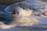 Waves on beach, blurred movement, Sanibel Island, Florida Photographic Print by Fritz Polking