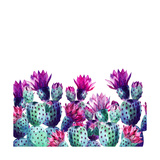 Watercolor Cactus Print by  tanycya