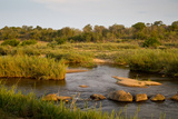View of river flowing along edge of reserve, Sabie River, Lower Sabie Reserve, Kruger Photographic Print by Bob Gibbons