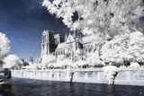 Paris Notre Dame Cathedral - In the Style of Oil Painting Giclee Print by Philippe Hugonnard