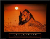 Leadership: Lion Mounted Print