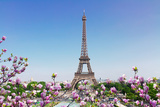 Eiffel Tower and Paris Cityscape Photographic Print by  neirfy