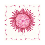 Joy Flower Posters by Cindy Shamp