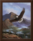 Eagle Gliding Posters by M. Caroselli