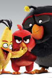 Angry Birds- Characters Poster