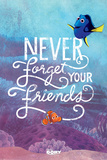 Finding Dory- Never Forget Affiches