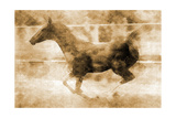 Running Foal Sepia I Poster by Kari Brooks