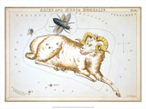 Urania's Mirror, Aries, 1825 Prints by Sidney Hall