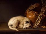 Sleeping Dog, 1650 Prints by Gerrit Dou