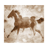 Running Foal II Sepia Prints by Kari Brooks