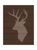 Deer 2 Prints by Tamara Robertson