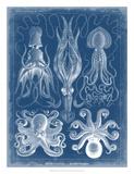 Marine Blueprint V Giclee Print by Vision Studio