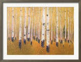 A Portrait Of Aspens Poster by Gary Max Collins
