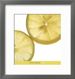 Lemon Prints by Mitch Hughes