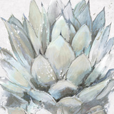 Cereus Echeveria Prints by Tania Bello