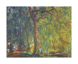 Weeping Willow Premium Giclee Print by Claude Monet