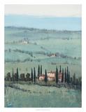 Hill Top Vista I Prints by Tim O'toole
