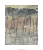 Mineral Layers II Limited Edition by Jennifer Goldberger