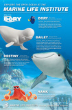 Finding Dory- Marine Life Group Poster