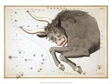 Urania's Mirror, Taurus, 1825 Prints by Sidney Hall
