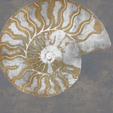Nautilus I Giclee Print by Mark Chandon