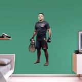 UFC Rafael Dos Anjos 2015 RealBig Wall Decal