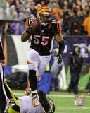 Vontaze Burfict 2015 Playoff Action Photo