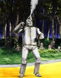 Trollkarlen från Oz Foto