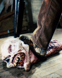 The Evil Dead Photo