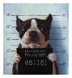 Mug Shot Prints by Lucia Heffernan