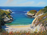 Above China Cove Limited Edition on Canvas by Tom Swimm