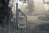 Abandoned Gate Limited Edition on Canvas by Donald Satterlee