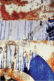 Blue Moon II Limited Edition on Canvas by Luann Ostergaard