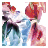 Botanical 4 Limited Edition by Kate Blacklock