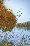 Autumn River 2 Limited Edition on Canvas by Donald Satterlee