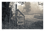 Abandoned Gate Limited Edition by Donald Satterlee